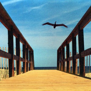 Travel Photography - Outer Banks by Liliane Blom