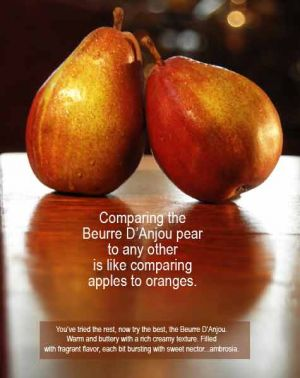 Pear-and-copy.jpg